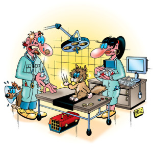 Tierarzt Comic