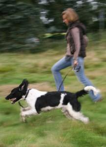Frauchen mit Hund beim Hundesport