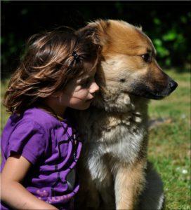 Auch Kinder lieben Hunde