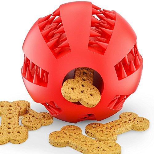 BELISY Dentalball für Besonders Hohen Spiel Spaß & Perfekte Zahnpflege