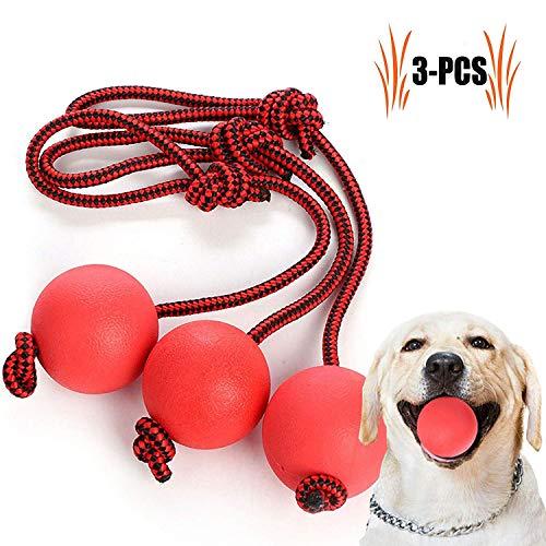 Elastisches Hundespielzeug, Ball mit Seil