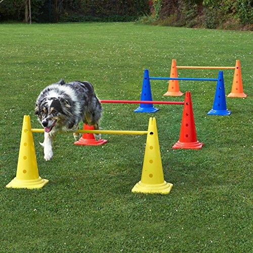 4 x Kombi-Kegelhürde 50 im Set, Hundetraining