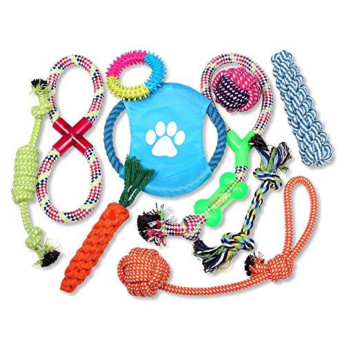 Schramm® 10er Set Hunde Kauspielzeug